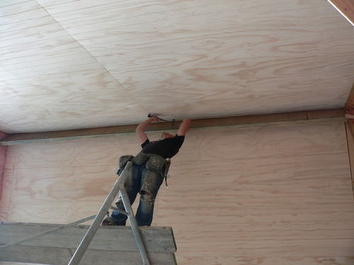 Michael neiling off the ply on the 7 metre ceiling
