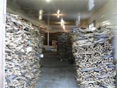Stacked Dried Cod Fish